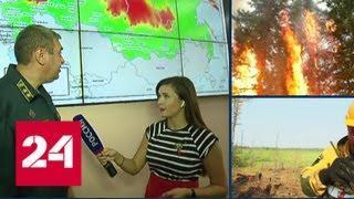 Дым сибирских пожаров дошел уже до Поволжья - Россия 24