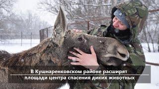 UTV. Новости центра Башкирии за 15 января