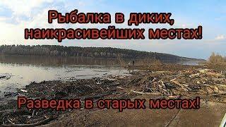 Рыбалка в Башкирии. Весенняя разведка секретных мест. Красивая природа!