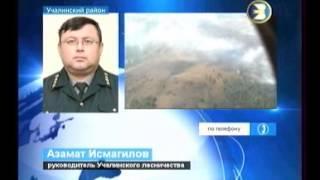 19.10.2012 БСТ лесной пожар в Учалинском районе.wmv