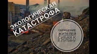 ШОК!!! Жители Сибая обратились к Владимиру Путину из-за экологической катастрофы в городе!