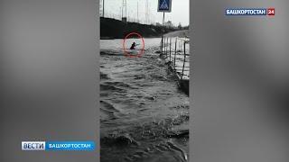 В Башкирии подросток решил перейти на роликах разлившуюся реку и чуть не погиб – видео