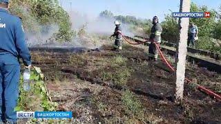 В Башкирии вдоль дороги загорелась сухая трава - ВИДЕО
