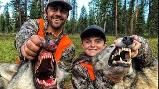 Охота на Волка с Сыном!? 2020 Стая Волков!? Взяли 2 Волка. Wolf Hunting with the Son !?  2020
