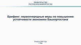 Брифинг: первоочередные меры по повышению устойчивости экономики Башкортостана