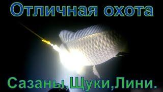 Подводная охота на щуку и карпа.Подводная охота в Башкирии.Underwater hunting for pike and carp 2019