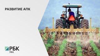 В прошлом году объем валовой продукции сельского хозяйства в Башкортостане составил 161 млрд руб.