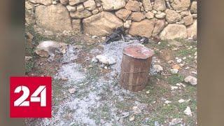 В Дагестане найдены мощные взрывные устройства - Россия 24