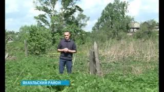 Поисковики калужского отряда «Пересвет» нашли останки солдата, призванного на войну из Башкирии