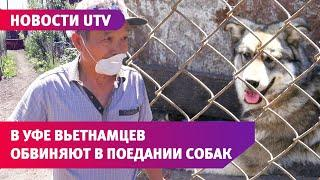 UTV. Жители поселка под Уфой обвиняют соседей из Вьетнама в том, что они едят собак