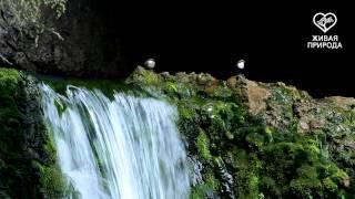 водопад Атыш. Автор Рамиль Юсупов