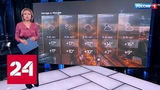 Пасмурно и дождливо: когда в столицу вернется тепло - Россия 24