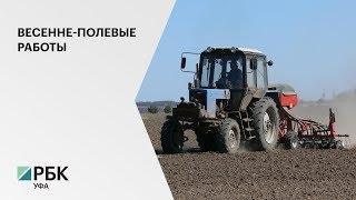 В 2020 г. в РБ на весенне-полевые работы выделено 13,5 млрд руб., в 2019 г. – 12,63 руб.