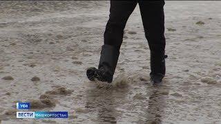 Очередная погодная аномалия: как долго продлится февральская оттепель в Башкирии
