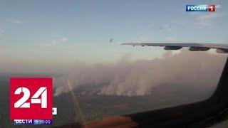 Тушение и на земле, и в небе: скорость распространения пожара в Сибири сократилась в 5 раз - Росси…