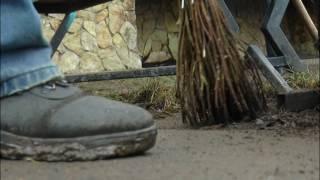 Сезон клещей в Туймазинском районе объявляется открытым