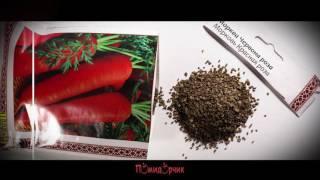 Семена Морковь Красная роза профпакет - Помидорчик
