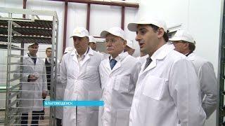 Глава республики ознакомился с ходом реализации крупных инвестпроектов в Благовещенске