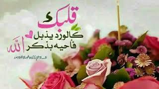 Салават Мухаммад