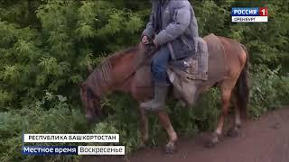 Почему Урал нам по колено: след пропавшего паводка найден в соседней Башкирии