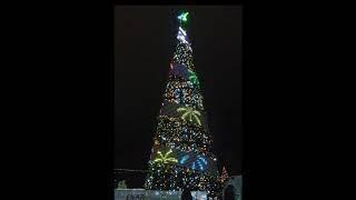 Нефтекамск городская елка 2020