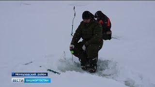 В нацпарке «Башкирия» прошел фестиваль рыбной ловли