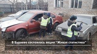 UTV. Новости севера Башкирии за 19 ноября (Бирск, Мишкино, Краснохолмский, Караидель)