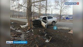 В Башкирии иномарка на полной скорости влетела в дерево, водитель скончался - ВИДЕО