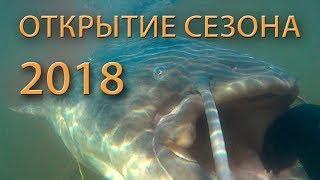 Подводная охота 2018 Открытие сезона  Ищем рыбные тропы