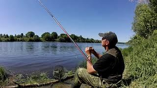 Весенняя рыбалка на Пшеницу и Горох 2019