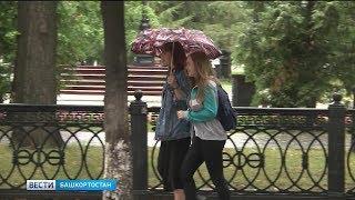 Погода в Башкирии: тепло и дождливо на этой неделе.