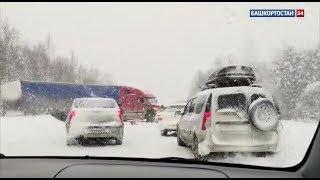 В Башкирии на трассе столкнулись две фуры