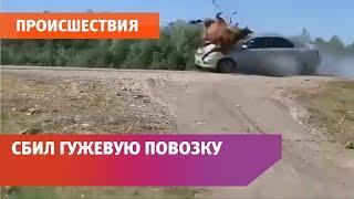 В Башкирии машина протаранила гужевую повозку с бабушками-артистками