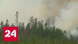 Природные пожары бушуют на территории четырех регионов России - Россия 24