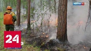 Пожары в Сибири: дым не дает вертолетам работать - Россия 24