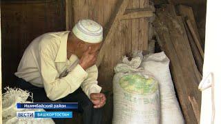 ДНК-экспертизы, адвокат и суды: в Башкирии соседи поругались из-за теленка