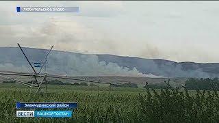 В Зилаирский район, где горит 76 гектаров леса, вылетел министр лесного хозяйства РБ