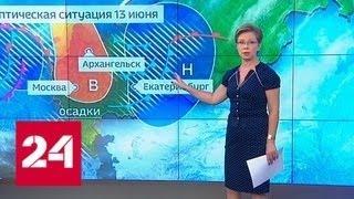 """""""Погода 24"""": в Москве заметно посвежело, но нуля не будет - Россия 24"""