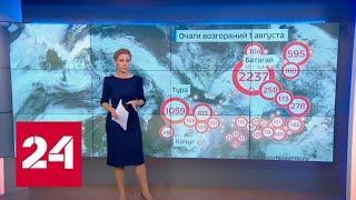 """""""Погода 24"""": совместными усилиями авиации и наземных сил в Сибири потушили 5 тысяч гектаров леса -…"""
