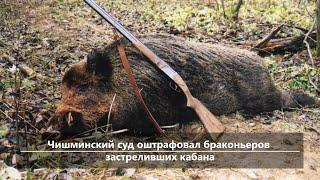 UTV. Новости центра Башкирии за 7 февраля