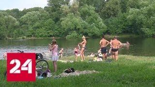 Нелегальные шашлыки: полиция и МЧС проверяют столичные парки - Россия 24