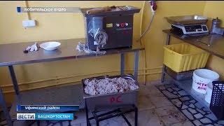 Роспотребнадзор начал проверки питания в детских летних лагерях