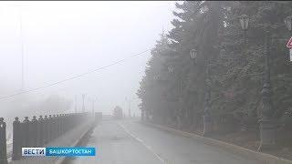 Сильный ветер, дожди и туман: в Башкирии объявлено штормовое предупреждение