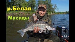 Рыбалка на реке Белая , Масады  2019 - 2