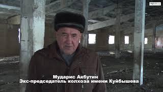 Более трех десятков ферм разрушены в Зианчуринском районе Башкирии