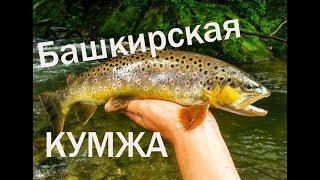 ✔ Забытые реки #8 Форель в Башкирии