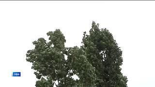 Ветер, грозы, местами град: в Башкирии ухудшится погода