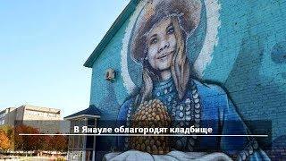 UTV. Новости севера Башкирии за 31 января (Нефтекамск, Дюртюли, Янаул, Татышлы)