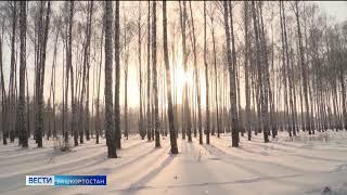 Прошедшая ночь стала самой морозной в Башкирии за весь январь