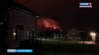 В Башкирии тушат пожар площадью 10 га